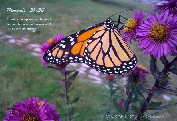 butterfly proverbs 31-30
